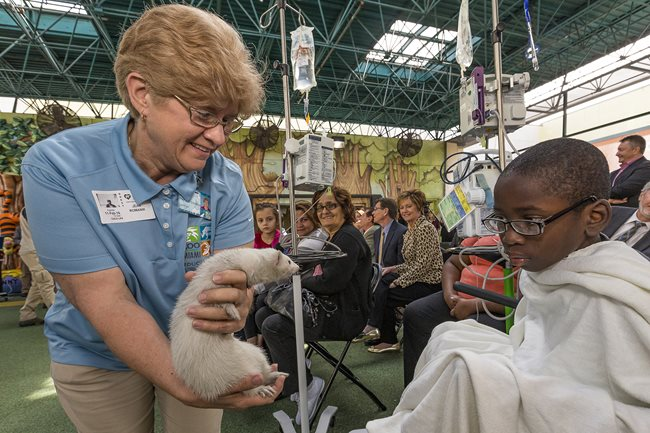 Zoos Bring Animal Kingdom to Patients at Nicklaus Children's Hospital