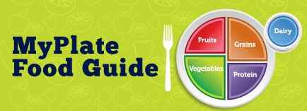 Parent Food Guide Pyramid Button Image