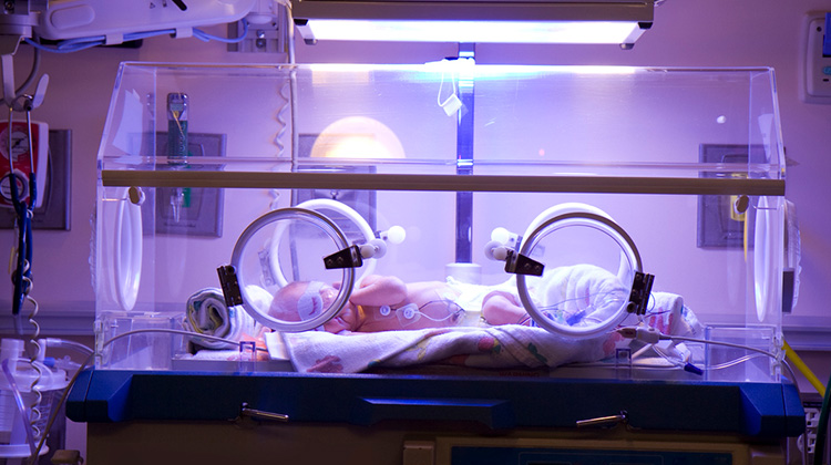 newborn inside intensive care incubator