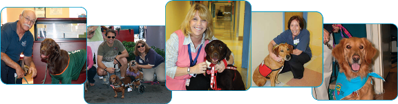 Pet Therapy Collage Banner